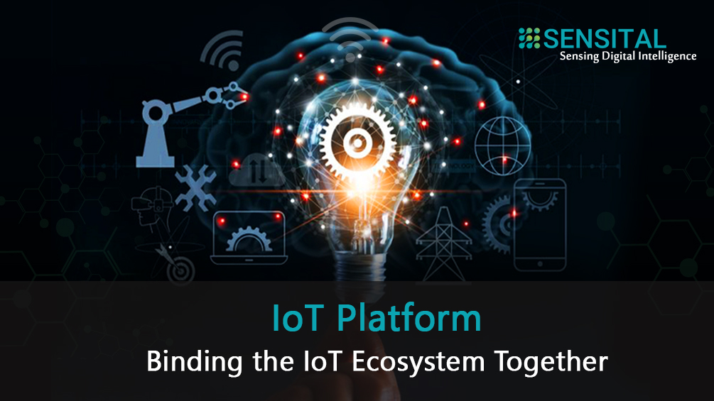 IoT Platform - Binding the IoT Ecosystem Together